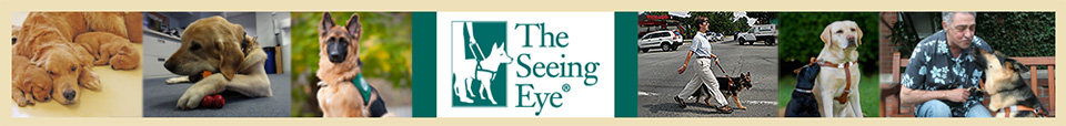 Seeing Eye, Inc. Website Header Image